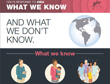 Zika virus. What we know infographic.