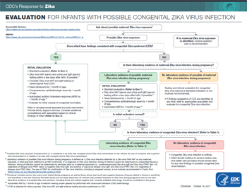 Interim guidlines for the evaluation and testing of infants whose mothers traveled to or resided in an area with ongoing Zika virus transmission during pregnancy infographic thumbnail