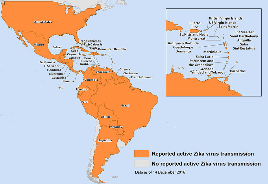Map of the Americas showing Zika virus transmission