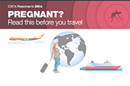 Pregnant? Read this before you travel infographic thumbnail