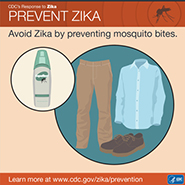 Prevent Zika: Avoid Zika by preventing mosquito bites.