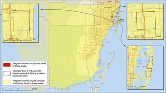 Transmisión activa del virus del Zika en Florida