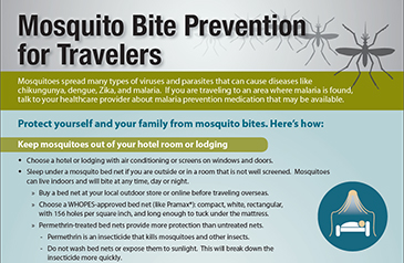 Zika Virus – What You Need to Know Before Your Next Trip