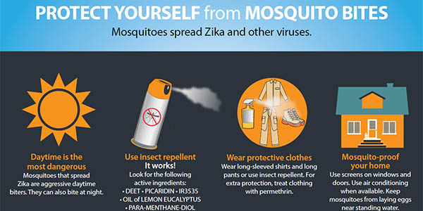 Controlling Mosquitoes At Home Zika Virus Cdc