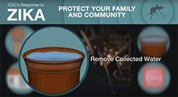 Captura de pantalla del video Eliminar el agua estancada: prevención del zika para Puerto Rico