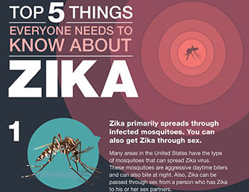 Top five things everyone needs to know about Zika fact sheet thumbnail