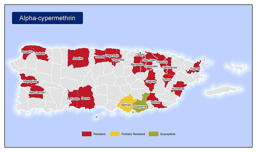 Testing in puerto rico zika virus cdc - Nacionalidad de puerto rico en ingles ...