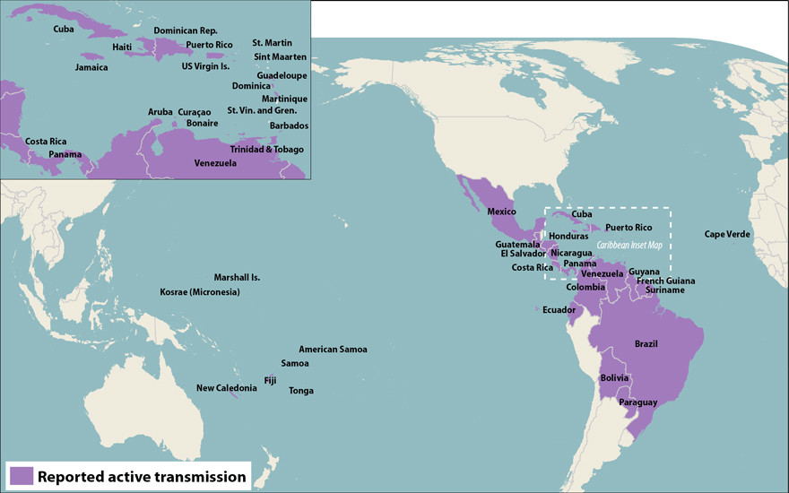 World map showing countries and territories with reported active transmission of Zika virus (as of March 18, 2016). Countries are listed in the table below.
