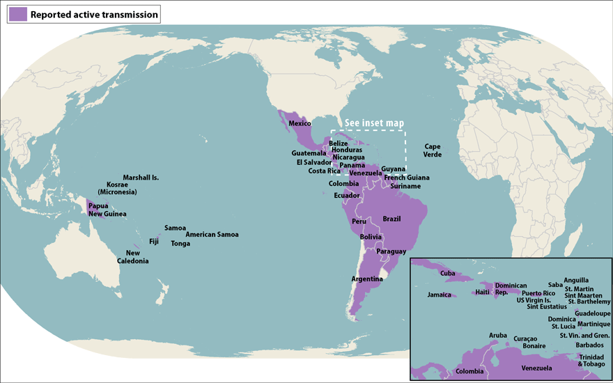 Ophthalmology and the zika virus trial runners world map showing countries and territories with reported active transmission of zika virus as of gumiabroncs Gallery