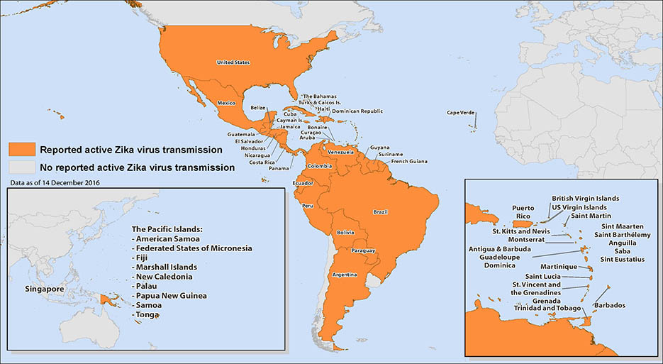 travel page world areas with zika