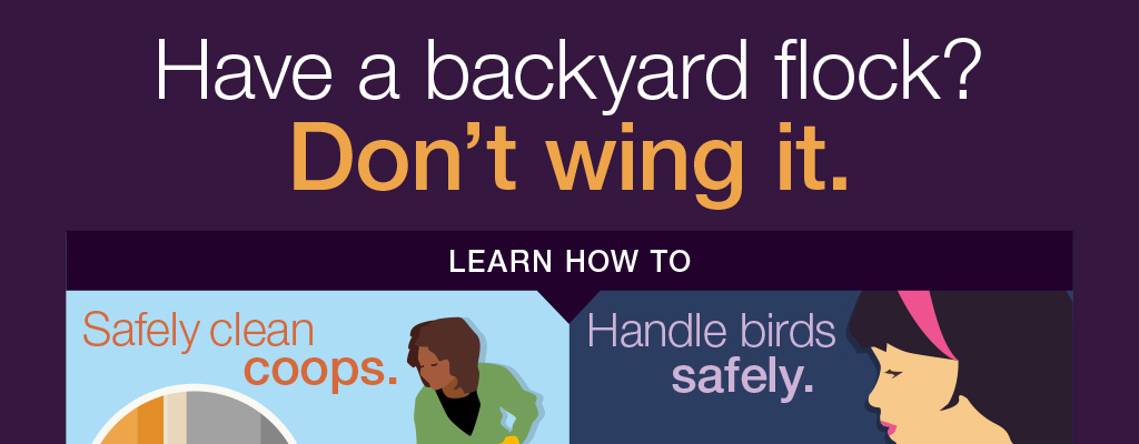 Have a Backyard Flock?