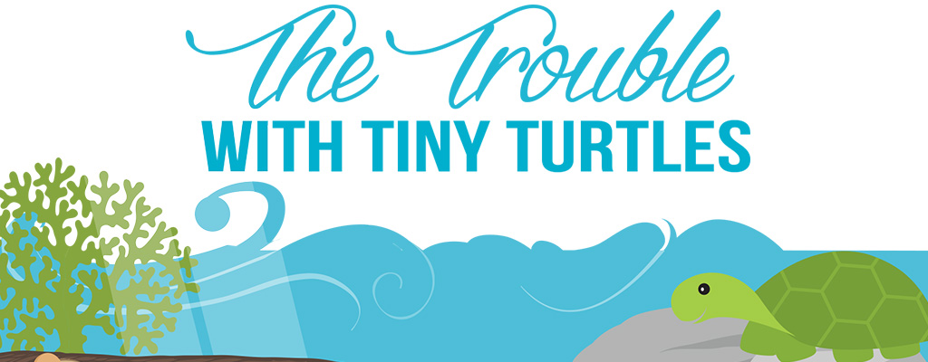 The Trouble with Tiny Turtles